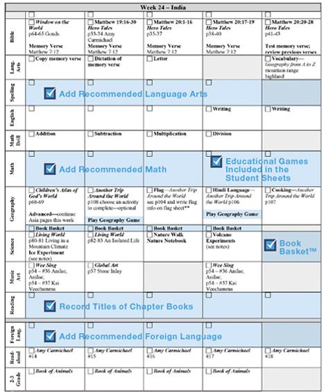 Curriculum Samples