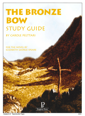 Study Guide The Bronze Bow