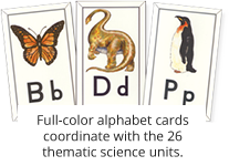 Alphabet cards example